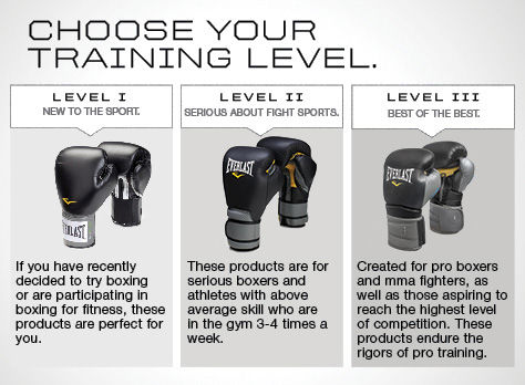 Everlast Training Level Chart