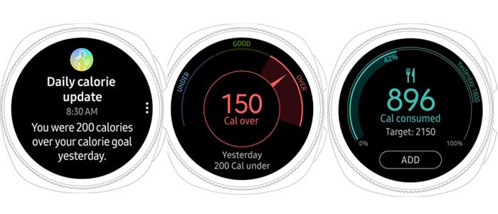 Samsung Gear Sport, Calorie Tracker